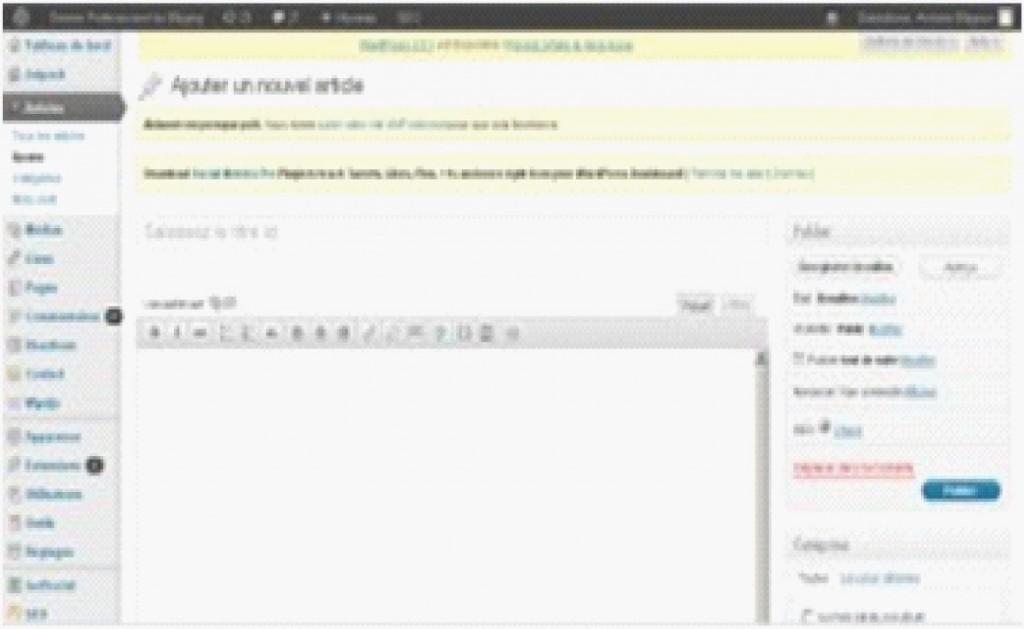 Éditeur de texte WordPress